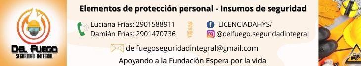 delfuegoseguridadintegral@gmail.com